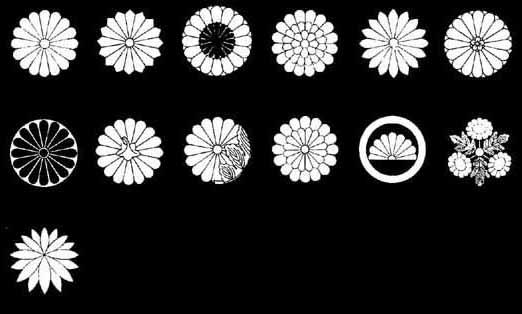 菊の画像 p1_2